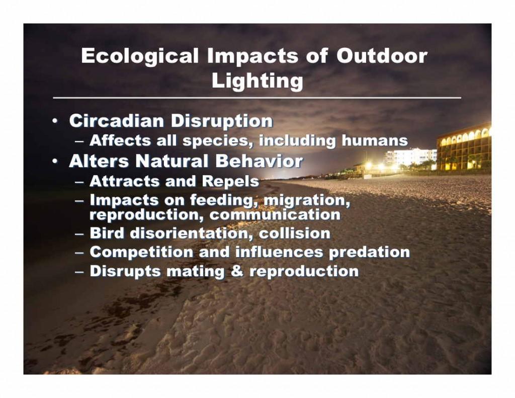 Ecological Lighting 1